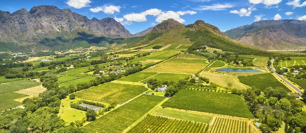Franschhoek - Wine Farms - Western Cape